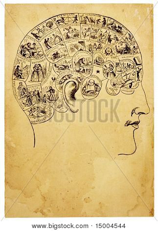 Old Phrenology Illustration