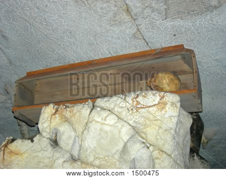 Skull In A Coffin From A Toraja Cemetary, Rantepao, Sulawesi Island, Indonesia