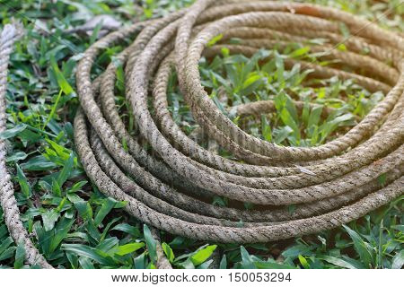 Coiled Roll Of Rope Arranged On Grass Ground With Sunlight