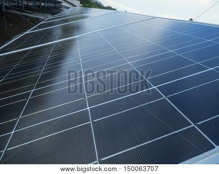 Solar panels in sunny day on Sicily