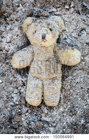 Yellow teddy bear lies wounded in a pile of grey ash