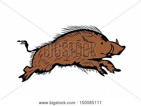 sketch of wild boar running, hand drawn illustration over white background