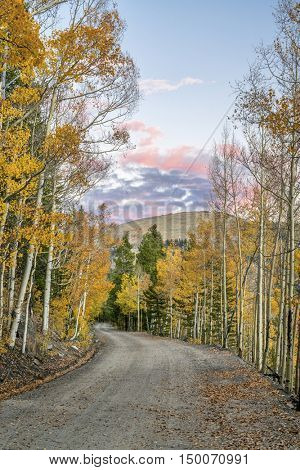 back country road in Colorado with aspen trees in fall colors - Frying Pan Road near Basalt