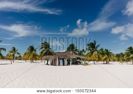 Palm trees on the shore of the Caribbean Sea on the white sand beach of Cayo Largo, Cuba