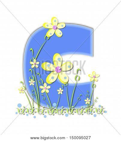 Alphabet Yellow Daisies C