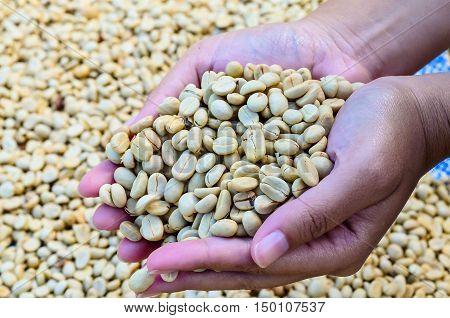coffee coffee bowler hand coffee bean color art