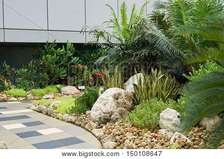 SINGAPORE - CIRCA SEPTEMBER, 2016: Cactus Garden at Singapore Changi Airport. Singapore Changi Airport is the primary civilian airport for Singapore.