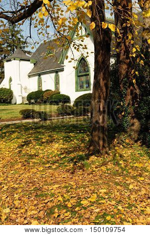 townhouse building and front lawn with fallen leaves in autumn
