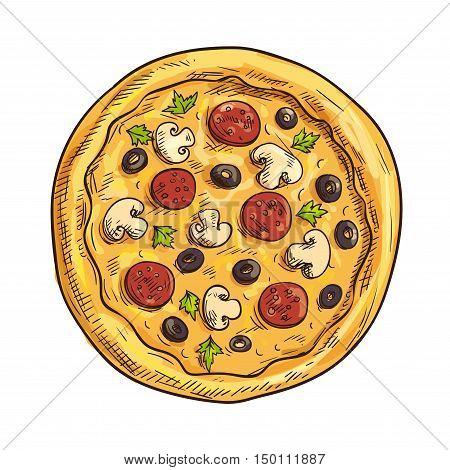 Italian pizza sketch with pepperoni sausage, black olive fruit, mushroom and basil. Pizzeria, italian cuisine restaurant, takeaway pizza box design