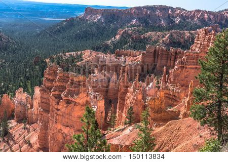 Hoodoos in the Bryce Canyon Amphitheater, Utah