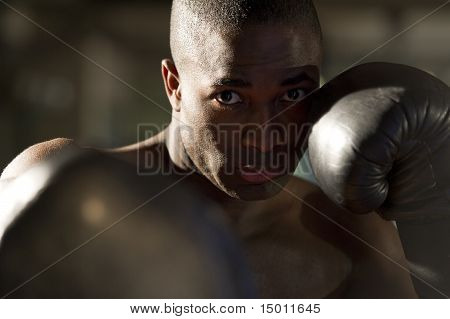 Boxer Throwing Punch