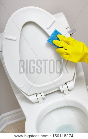 Toilet bowl cleaning.