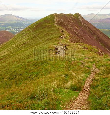 Path leading to Causey Pike with purple heather covered slopes, Lake District, Cumbria, England, UK