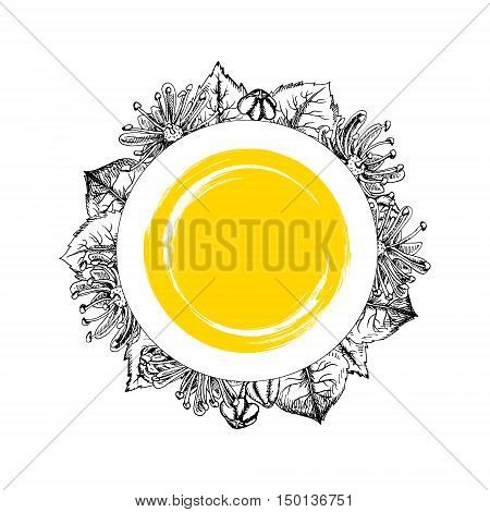 Round frame with linden flowers. Black and white graphic vintage design. Template with linden flowers. Pattern in vintage style. Retro pattern. Drawing line sketch. Vector illustration.