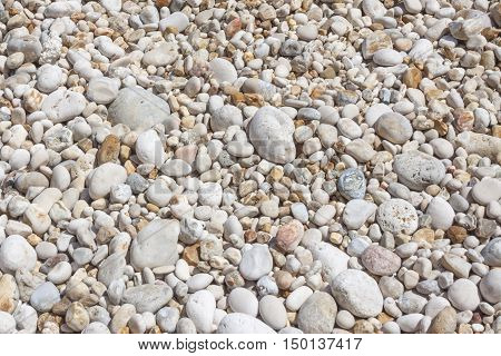Texture of white and coloured pebbles could have multiple uses, could also be used as wallpaper