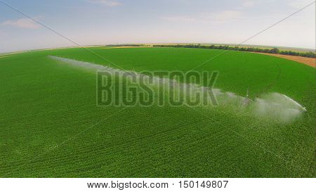 Irrigation system on a industrial farm. Irrigating beans