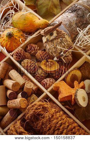 Closeup photo of autumn decor ingredients, owl, cork, pineal.