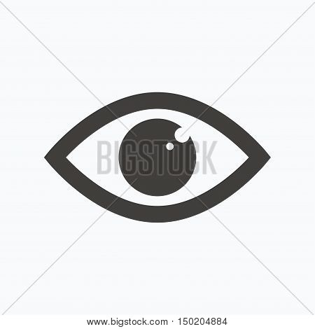 Eye icon. Eyeball vision symbol. Gray flat web icon on white background. Vector