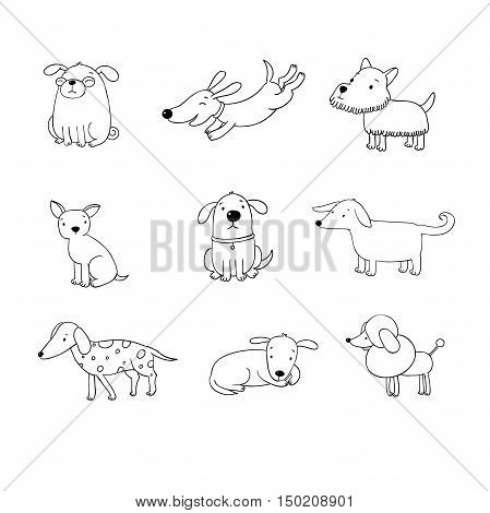 Set of funny cartoon dogs. Hand drawing isolated objects on white background. Vector illustration. quick sketch.