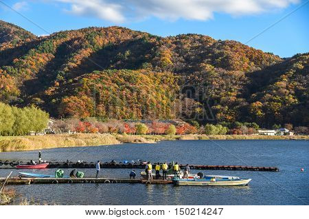 YAMANASHI JAPAN - NOVEMBER 15 2015 : Beautiful autumn landscape and docks at Kawaguchi lake (Kawaguchiko) near Fuji mountain Yamanashi prefecture Japan.