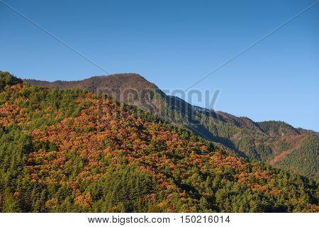 beautiful mountain landscape with clear blue sky in autumn season near Kawaguchiko (Kawaguchi lake) Yamanashi prefecture Japan