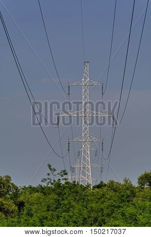 High voltage transmission line pass over the forest