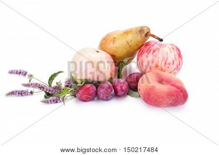 Ripe berries and fruit are isolated on a white background