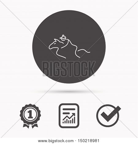 Horseback riding icon. Jockey rider sign. Horse sport symbol. Report document, winner award and tick. Round circle button with icon. Vector