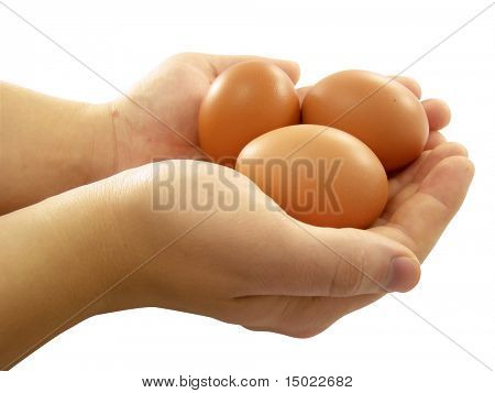 Human hands holding hen eggs isolated over white background with clipping path included