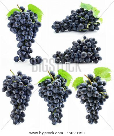 collection cluster of blue grape isolated on white background