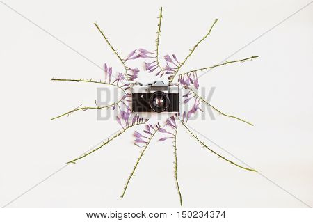 Creative arrangement of purple hosta flowers with vintage retro photo camera on white background. Flat lay top view.