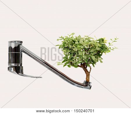 Water saving concept of a silver chrome kitchen tap with a single lush green tree growing from the tap opening. Copy-space area for renewable water and sustainability concepts and design ideas on an isolated white background.