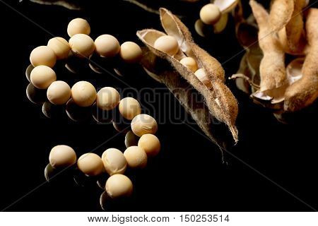 Soybeans Forming Dollar Symbol. Soybean Market. Agriculture Soybean Pods.