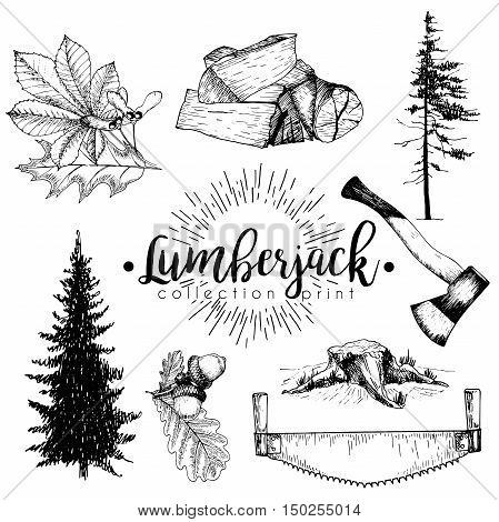 Vectro set of timber print collection. Stamp axe pine trees firewoods saw leaves and acorns. Hand drawn vintage style. Trendy hipster lumberjack illustration.