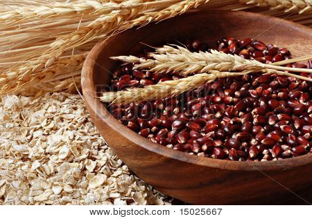 Wooden bowl of red corn kernels with wheat spikes and oat flakes.  Macro with shallow dof.