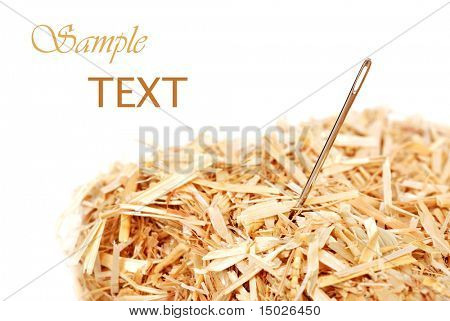 Needle in a haystack on white background with copy space.  Macro with shallow dof.