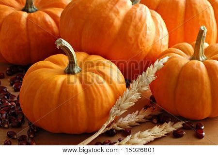 Miniature pumpkins with spikes of wheat and kernels of red corn.  Macro with shallow dof.