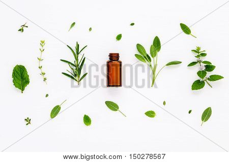 Bottle Of Essential Oil With Fresh Herbal Sage, Rosemary, Lemon Thyme ,thyme ,green Mint And Pepperm