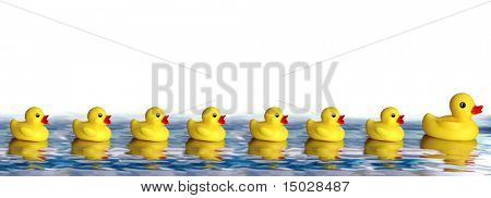 Rubber Ducky family floating on water