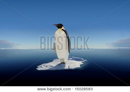 Globalwarming- The last emperor penguin standing on a floe