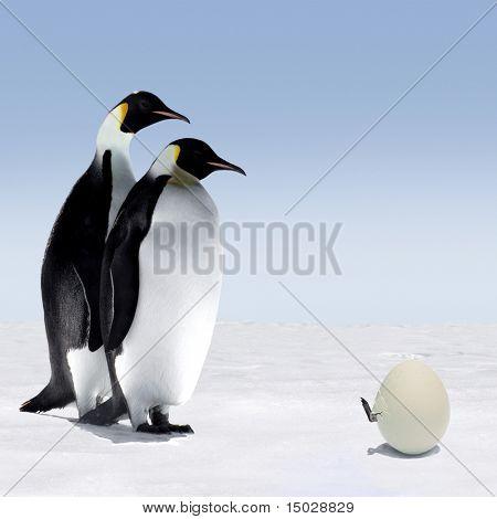 Warten auf das Ei zu Hatch