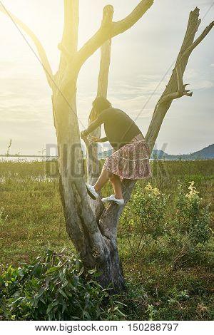 naughty teenage girl climbing the dead tree. naughty girl under rim light.