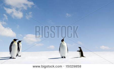 Emperor Penguin rejects Adelie penguin