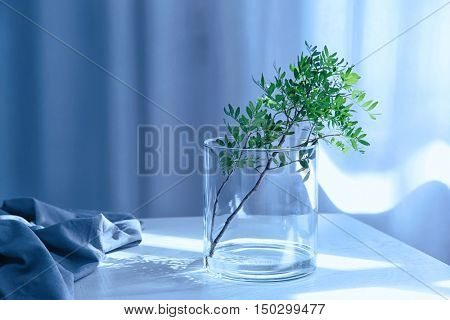 Green twig in glass vase on wooden table indoors