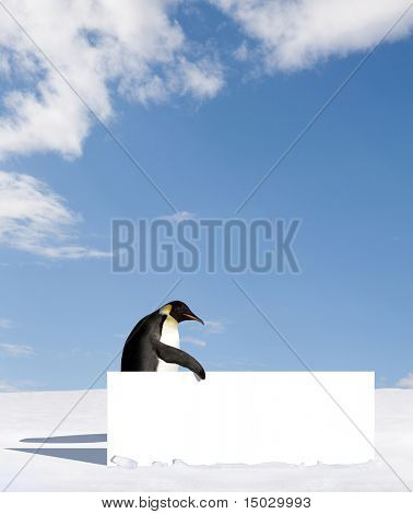 Emperor penguin holding a billboard