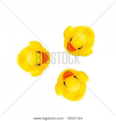 three rubber yellow ducks isolated on white