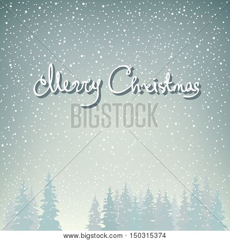 Snowfall in the Forest and Text  Merry Christmas, Snow Falls on the Spruces ,Fir Trees in Winter in Snowfall, Winter Background, Christmas Winter Landscape in Gray Shades, Vector Illustration