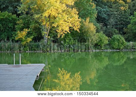 a outdoor swimming pool in the autumn