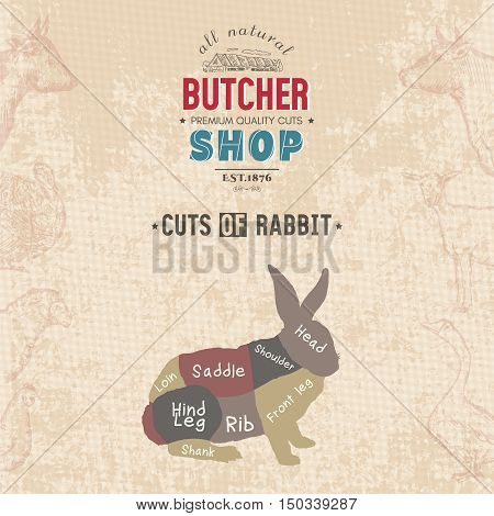Cuts of rabbit. Butcher shop retro poster scheme and diagram - Rabbit. Vintage hand drawn vector Illustration