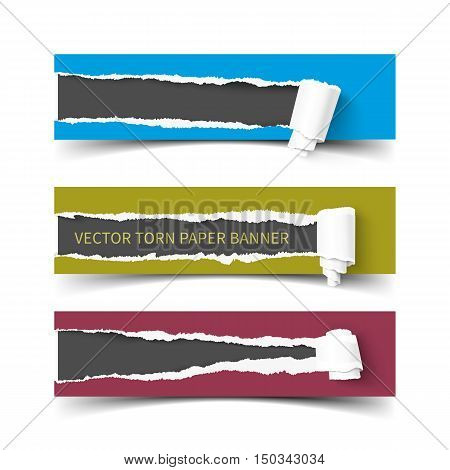 Set of three vector torn paper banners with paper rolls. Color ripped pieces of paper with shadow isolated on white background.